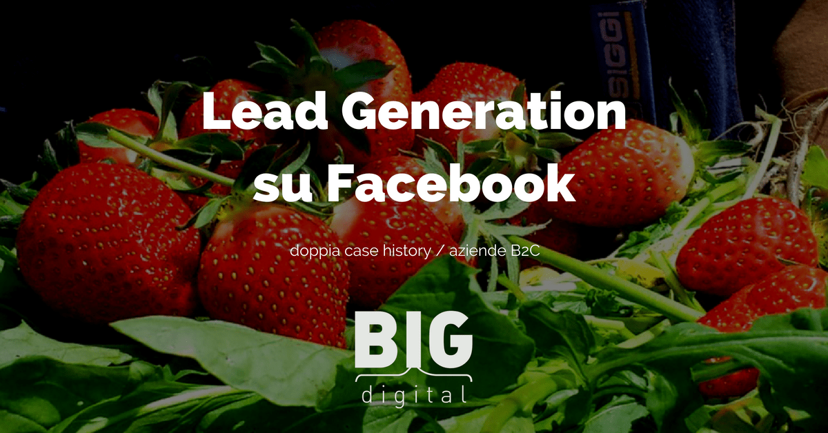 lead generation facebook funziona