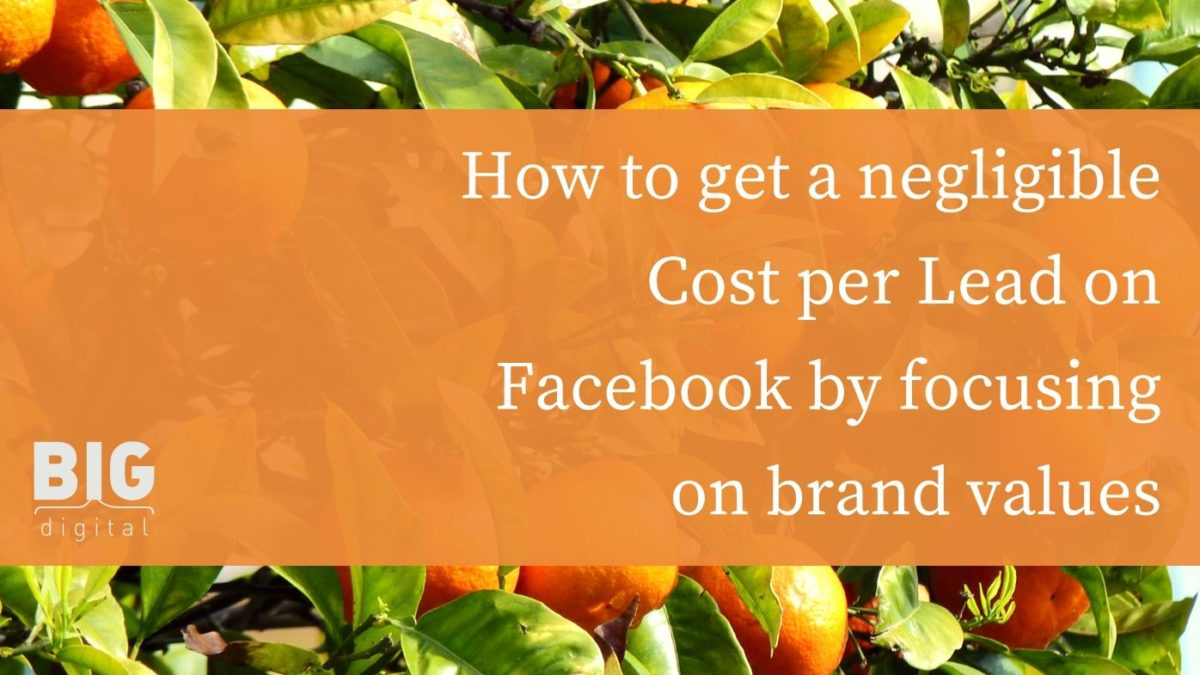 How to get a negligible Cost per Lead on Facebook by focusing on brand values: two B2C success case studies.